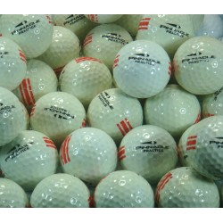 Pinnacle Used Range Ball UR 18
